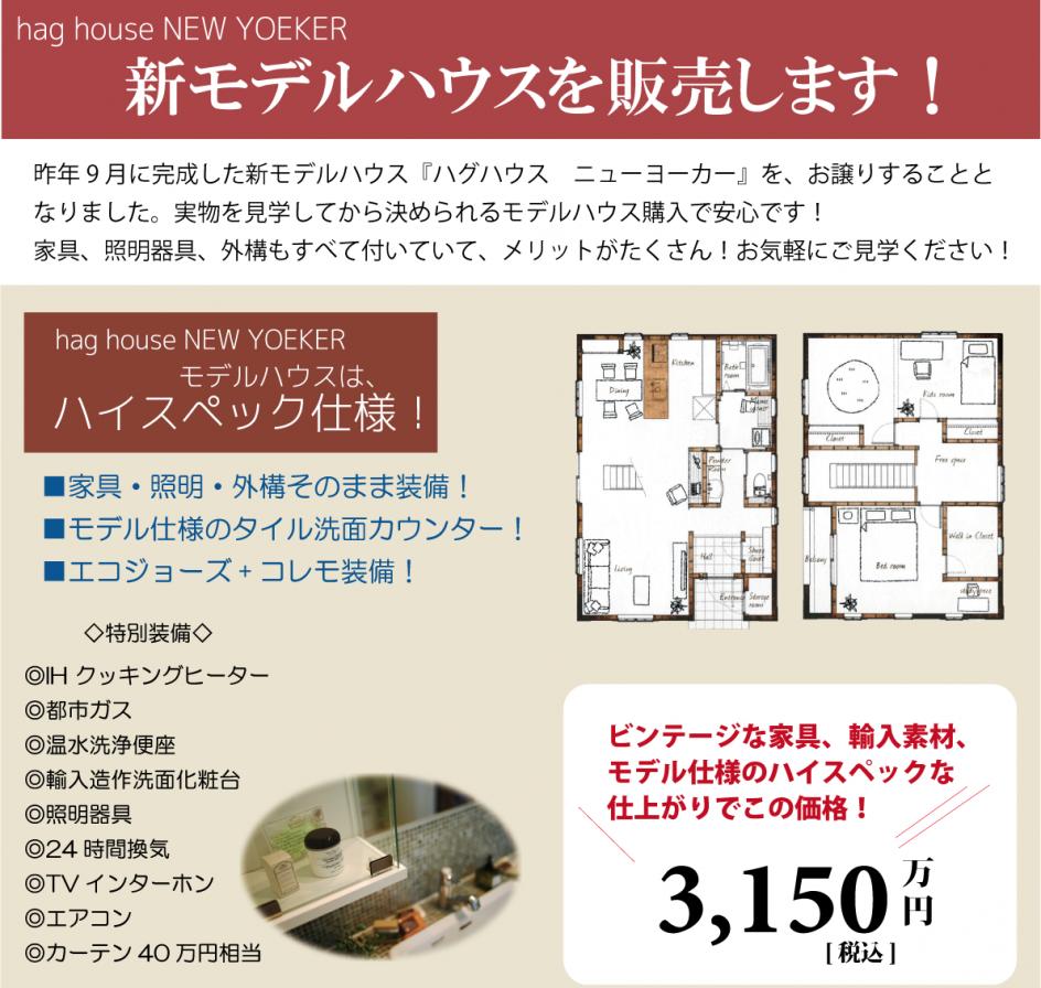 NYモデル販売HP用3